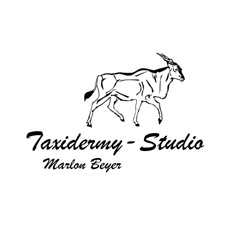 Taxidermy Studio Marlon Beyer